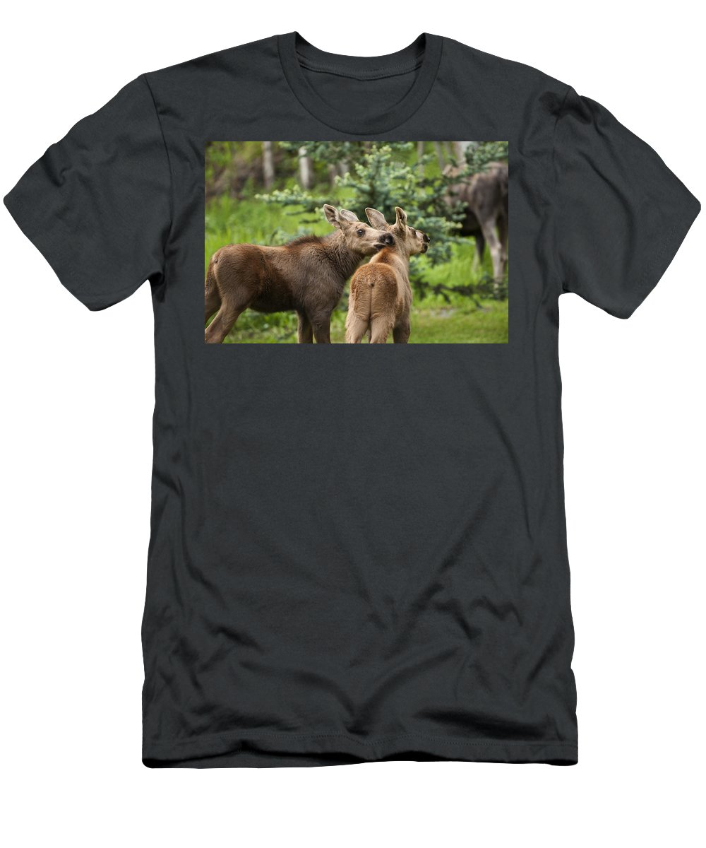 Moose Men's T-Shirt (Athletic Fit) featuring the photograph Lean On Me by Ted Raynor