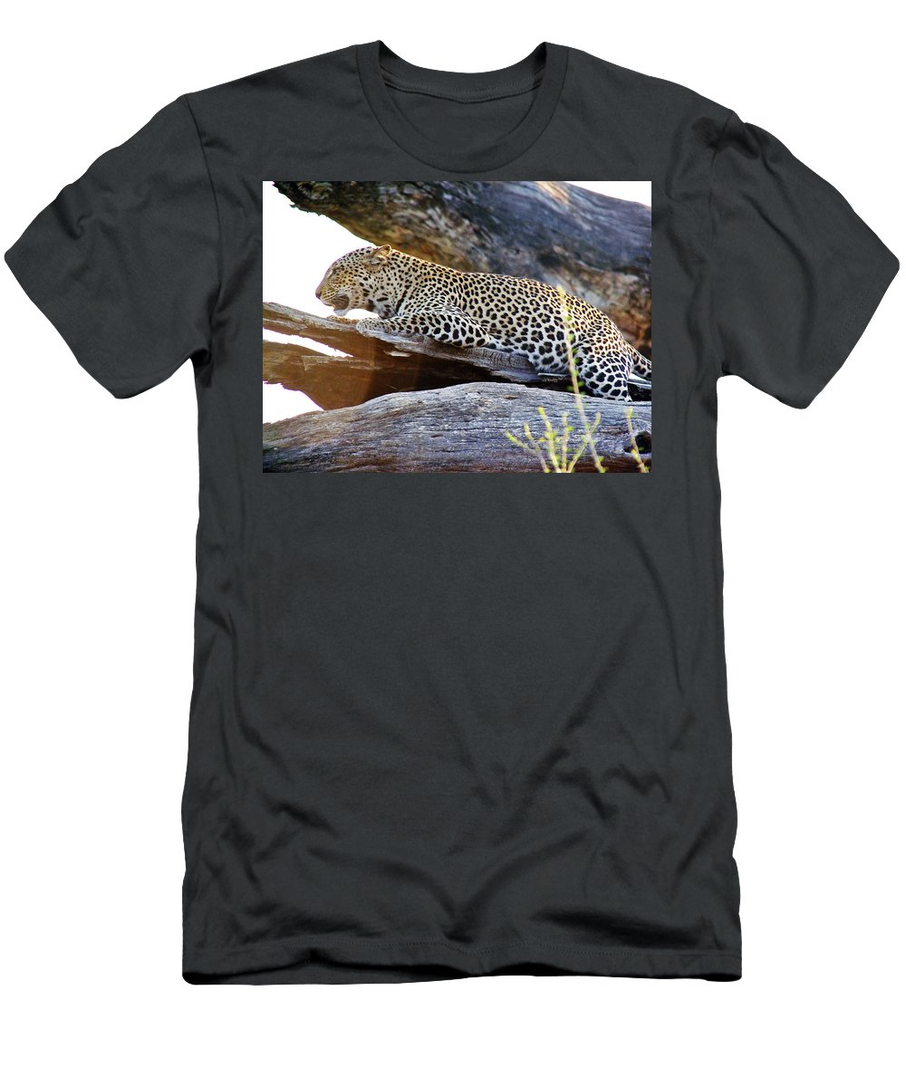 Leopard Men's T-Shirt (Athletic Fit) featuring the photograph Leopard by Tony Murtagh
