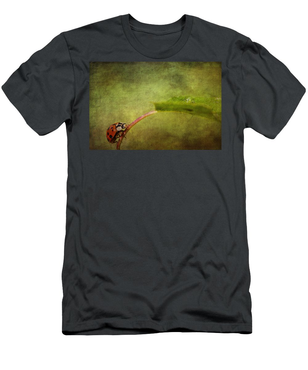 Ladybird Men's T-Shirt (Athletic Fit) featuring the photograph Looking For Dinner by Chris Smith