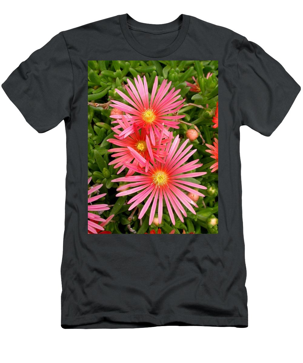 Ice Plant Picture Men's T-Shirt (Athletic Fit) featuring the photograph Mesa Verde Ice Plant by Cynthia Wallentine