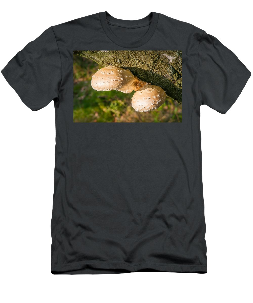 Autumn Men's T-Shirt (Athletic Fit) featuring the photograph Mushroom On Tree Trunk by Alain De Maximy