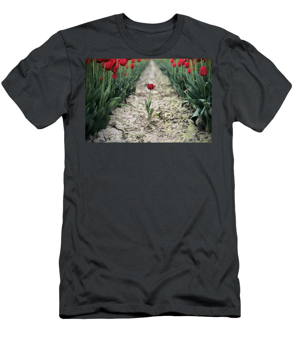 Travel Men's T-Shirt (Athletic Fit) featuring the photograph Red Tulips by Jim Corwin
