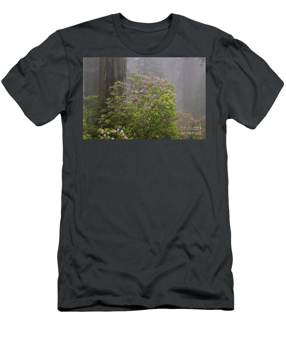 Pacific Rhododendron Men's T-Shirt (Athletic Fit) featuring the photograph Rhododendron In Del Norte State Park, Ca by John Shaw