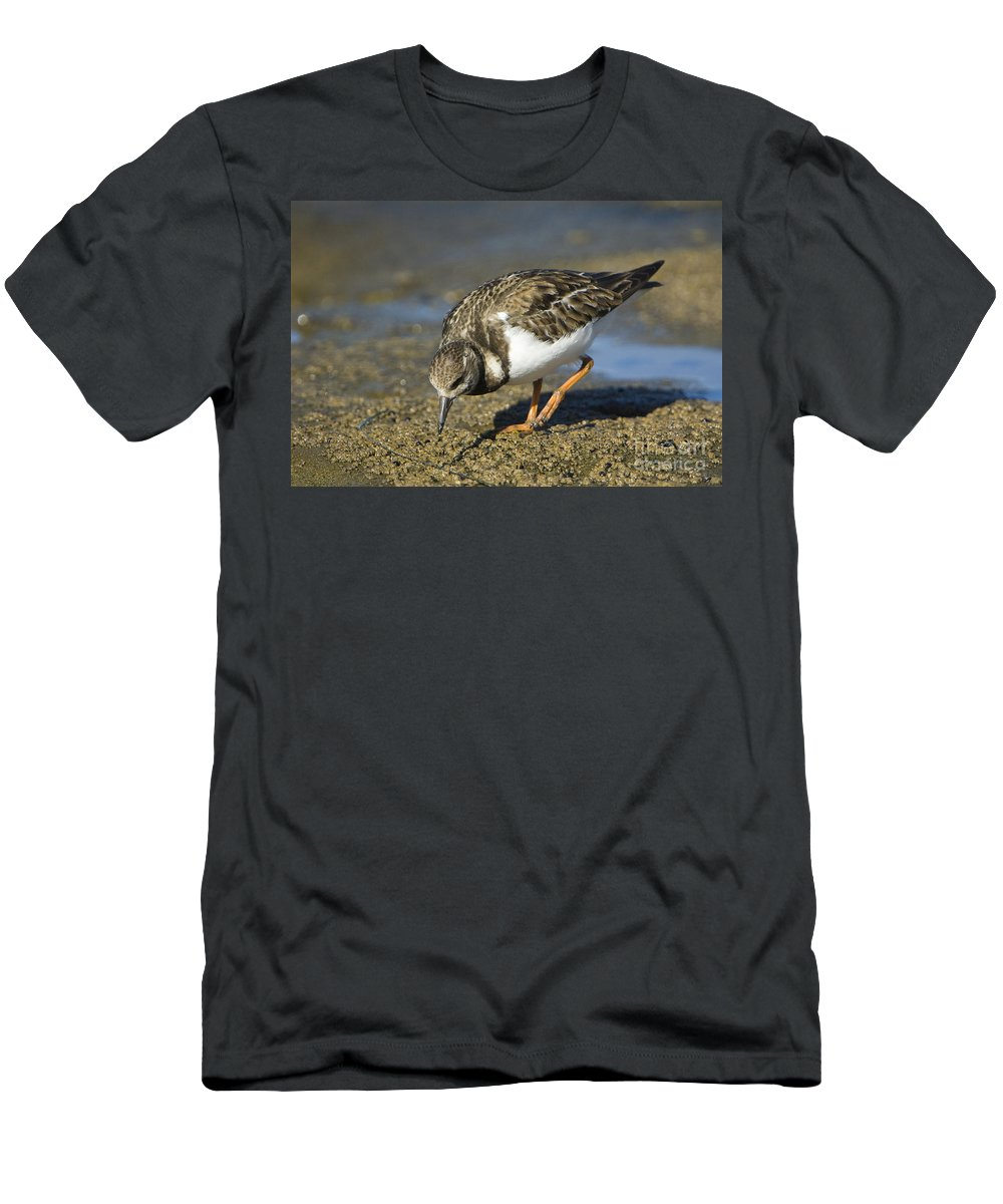 Nature Men's T-Shirt (Athletic Fit) featuring the photograph Ruddy Turnstone by John Shaw