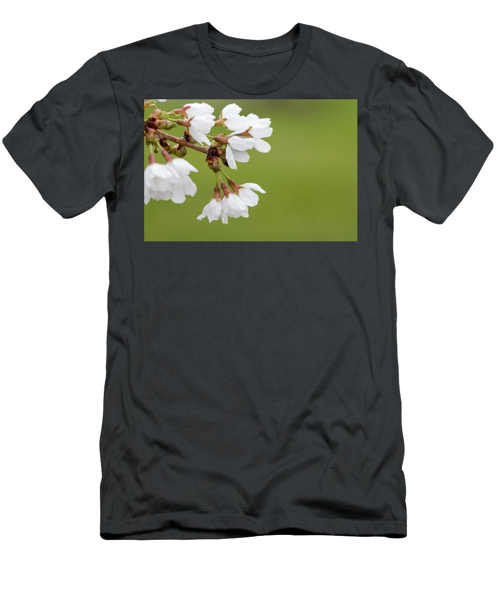 Bloom Men's T-Shirt (Athletic Fit) featuring the photograph Spring Flowers by Gaurav Singh