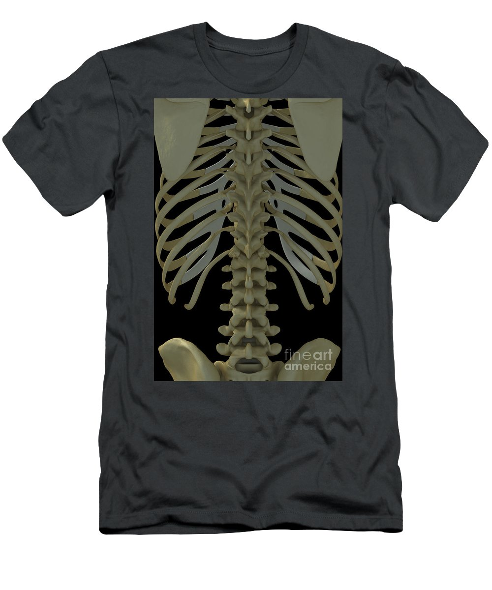 Vertical Men's T-Shirt (Athletic Fit) featuring the photograph The Spine by Science Picture Co
