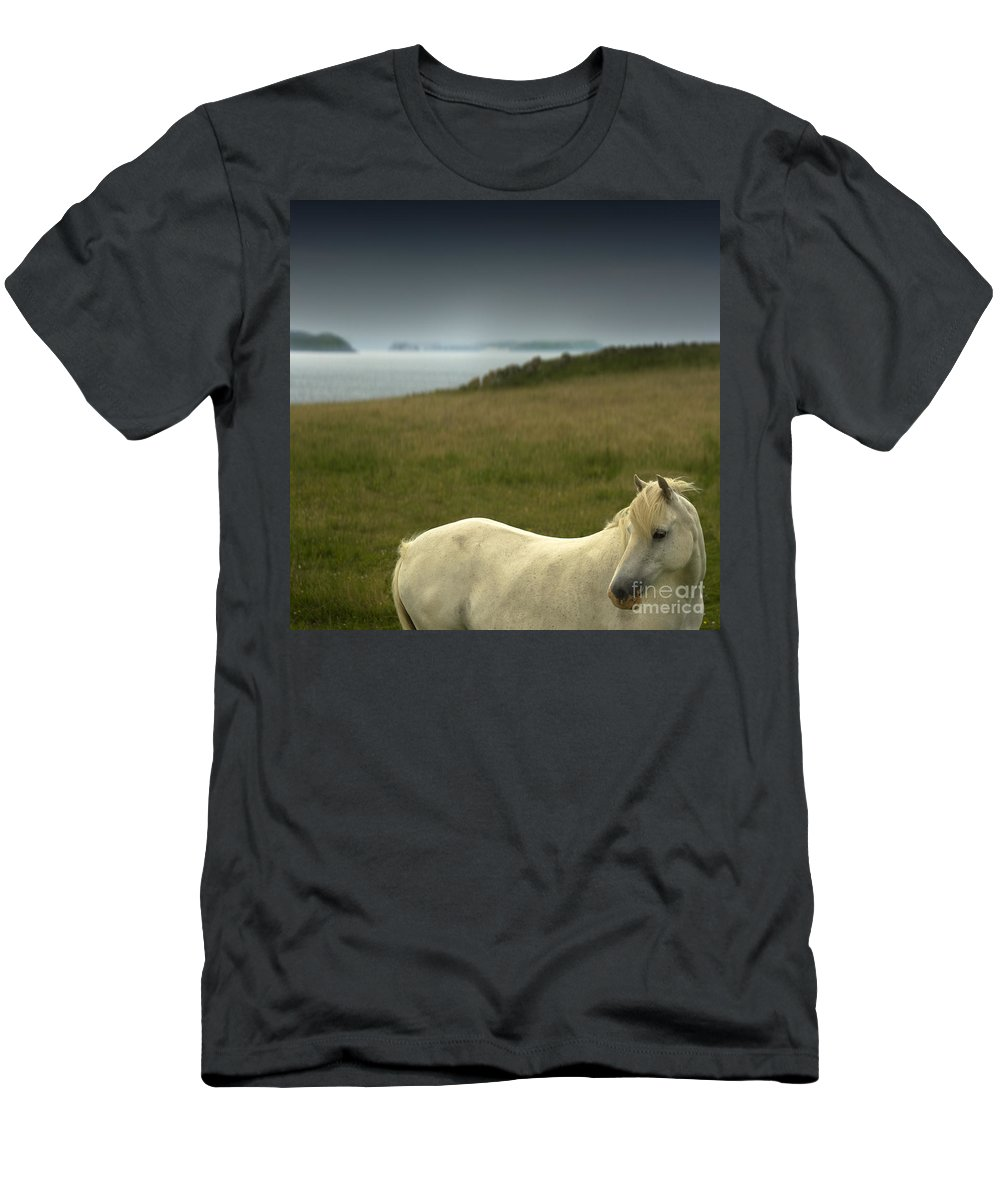 Welsh Pony Men's T-Shirt (Athletic Fit) featuring the photograph The Welsh Pony by Angel Ciesniarska