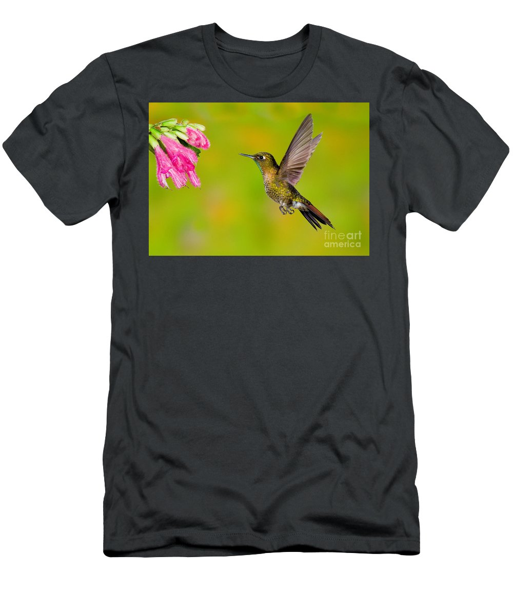 Fauna Men's T-Shirt (Athletic Fit) featuring the photograph Tyrian Metaltail Hummingbird by Anthony Mercieca
