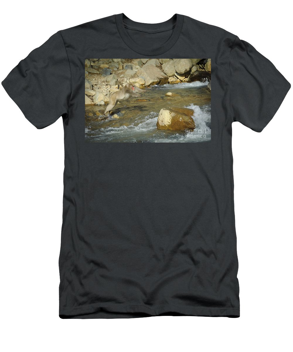 Japanese Macaque Men's T-Shirt (Athletic Fit) featuring the photograph Snow Monkeys by John Shaw