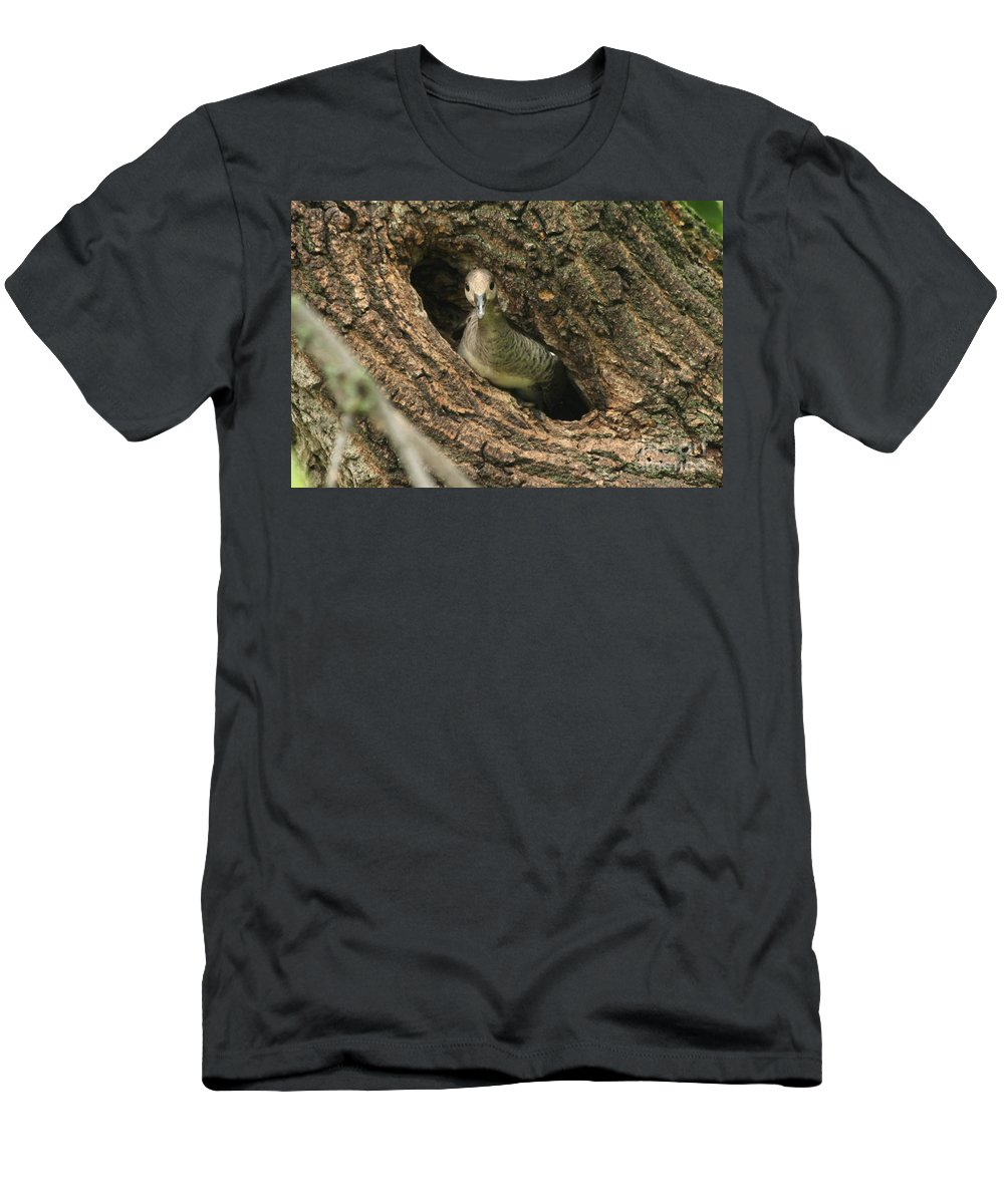 Immature Men's T-Shirt (Athletic Fit) featuring the photograph Immature Hooded Merganser by Lori Tordsen