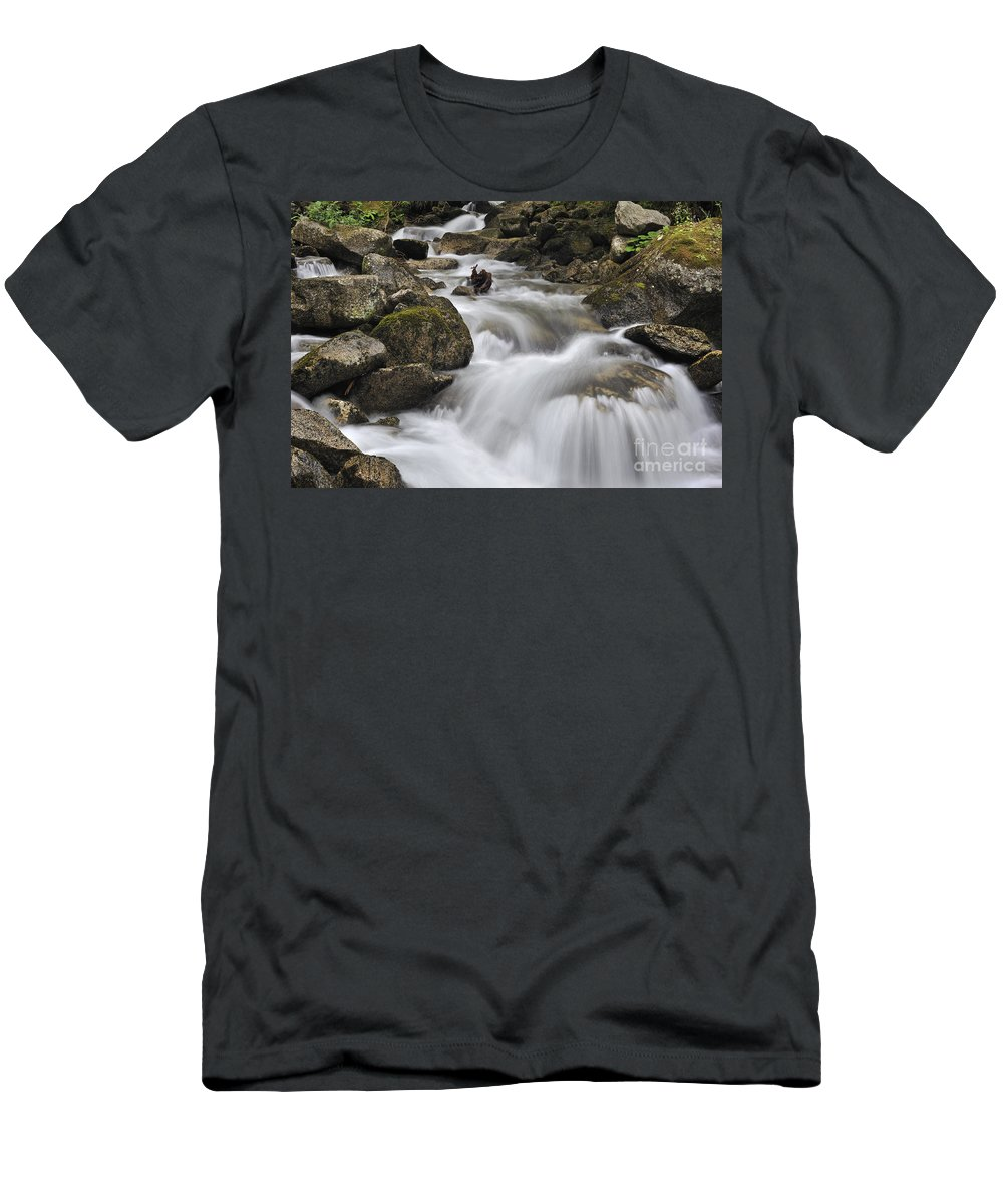 Mountain Brook Men's T-Shirt (Athletic Fit) featuring the photograph 110414p104 by Arterra Picture Library