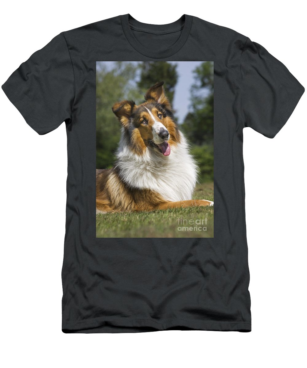 Mammal Men's T-Shirt (Athletic Fit) featuring the photograph 110506p178 by Arterra Picture Library