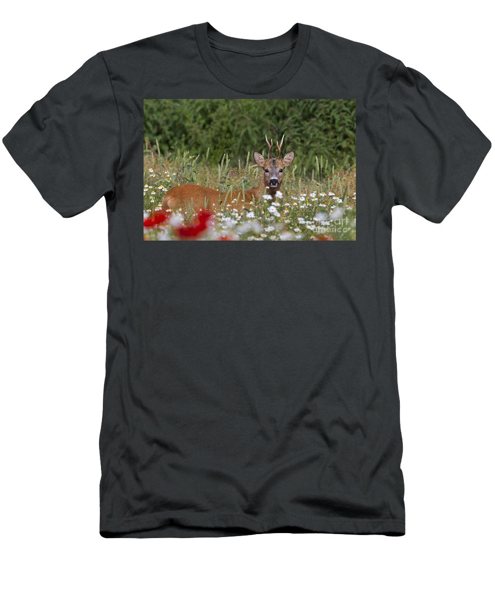 Roe Dee Men's T-Shirt (Athletic Fit) featuring the photograph 110714p324 by Arterra Picture Library