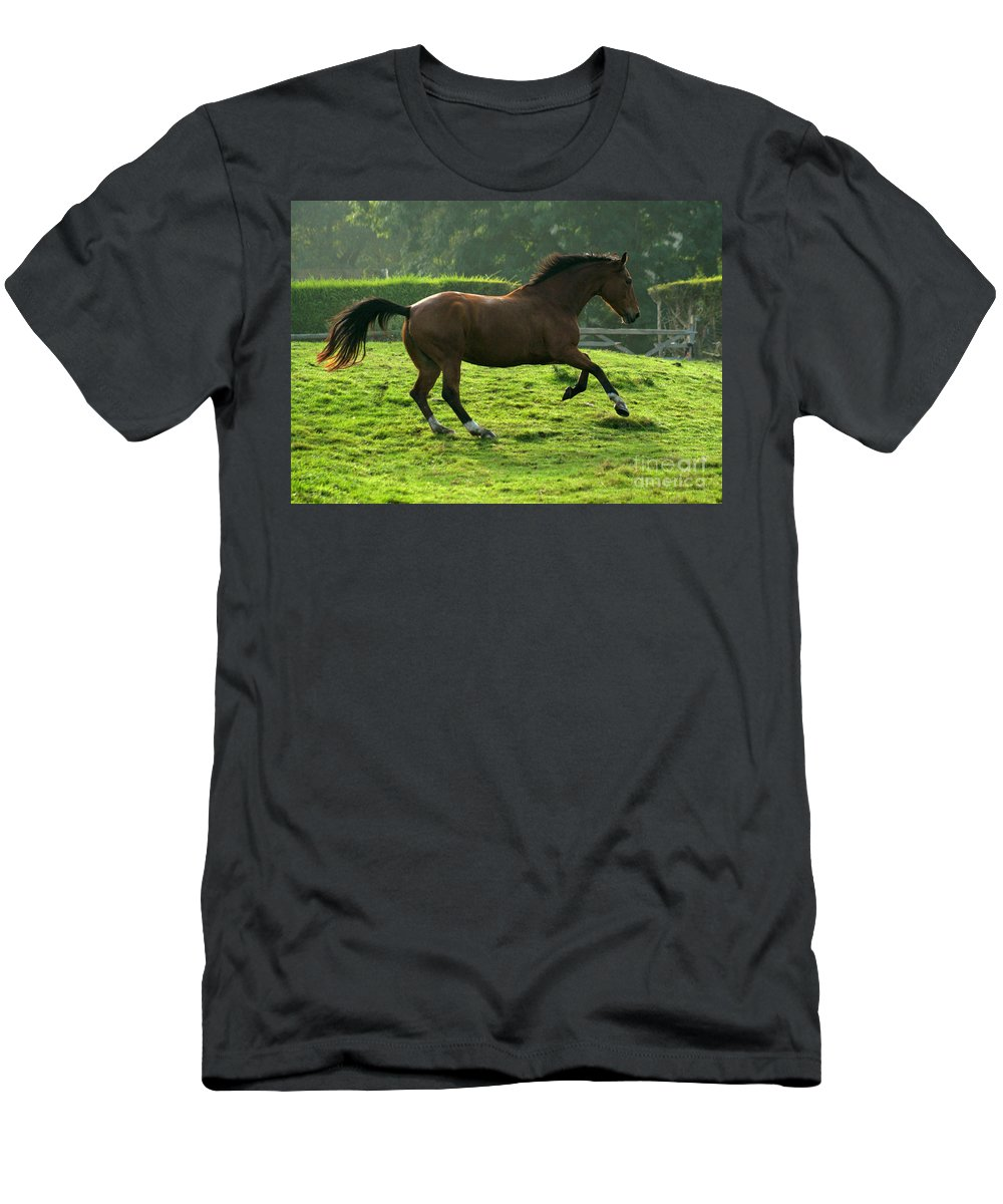 Grey Horse Men's T-Shirt (Athletic Fit) featuring the photograph The Bay Horse by Angel Ciesniarska