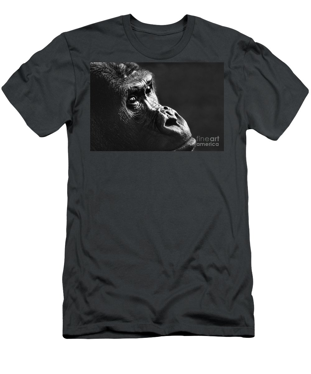 Gorilla Men's T-Shirt (Athletic Fit) featuring the photograph 120118p088 by Arterra Picture Library