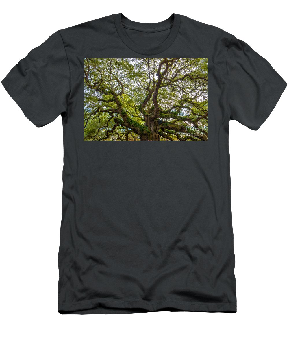 Angel Oak Tree On Johns Island Sc Men's T-Shirt (Athletic Fit) featuring the photograph Top Half by Dale Powell