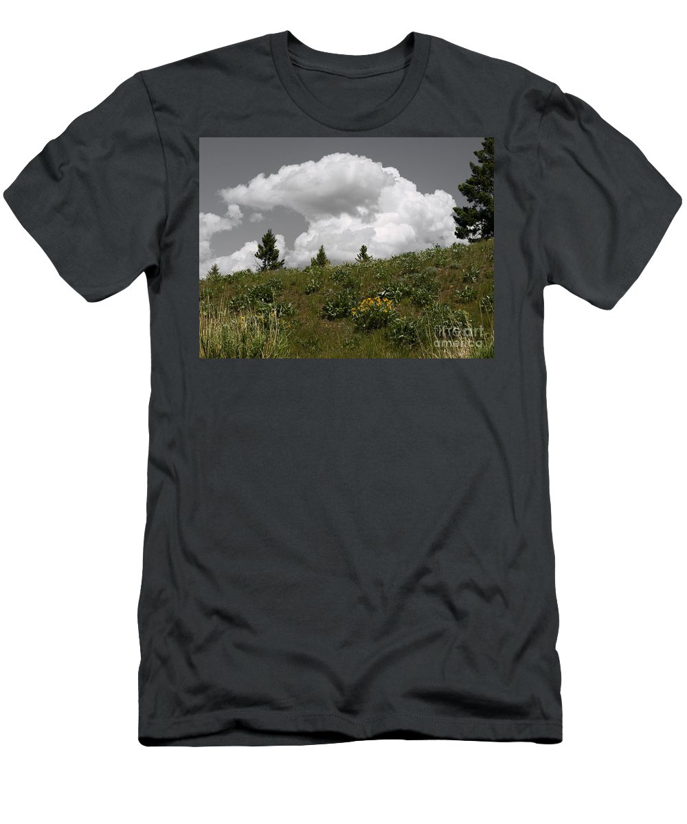 Montana Men's T-Shirt (Athletic Fit) featuring the photograph Cloudy With Green by Tara Lynn