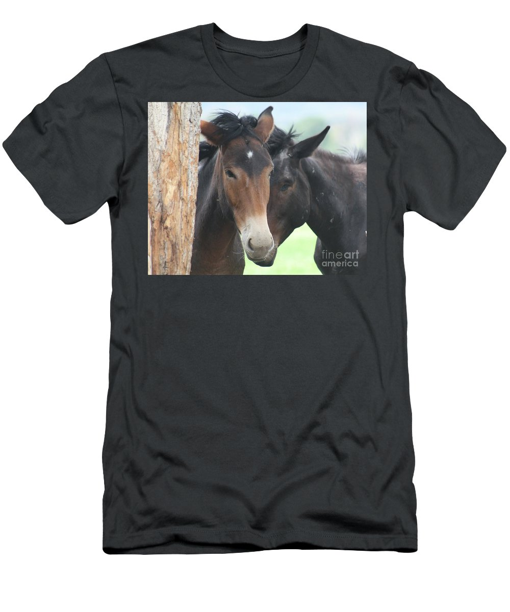 Horses Men's T-Shirt (Athletic Fit) featuring the photograph Buddies by Brandi Maher