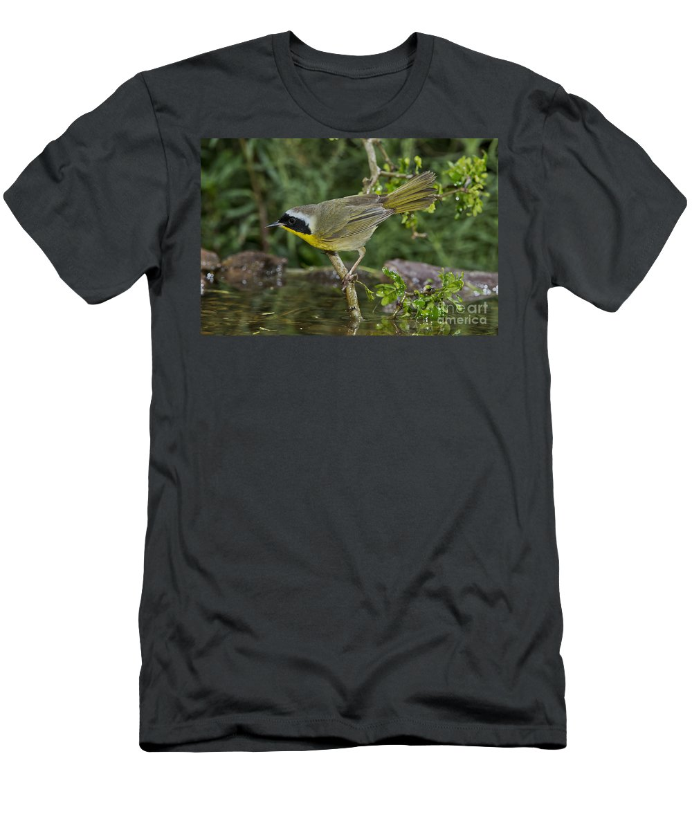 Common Yellowthroat Men's T-Shirt (Athletic Fit) featuring the photograph Common Yellowthroat by Anthony Mercieca