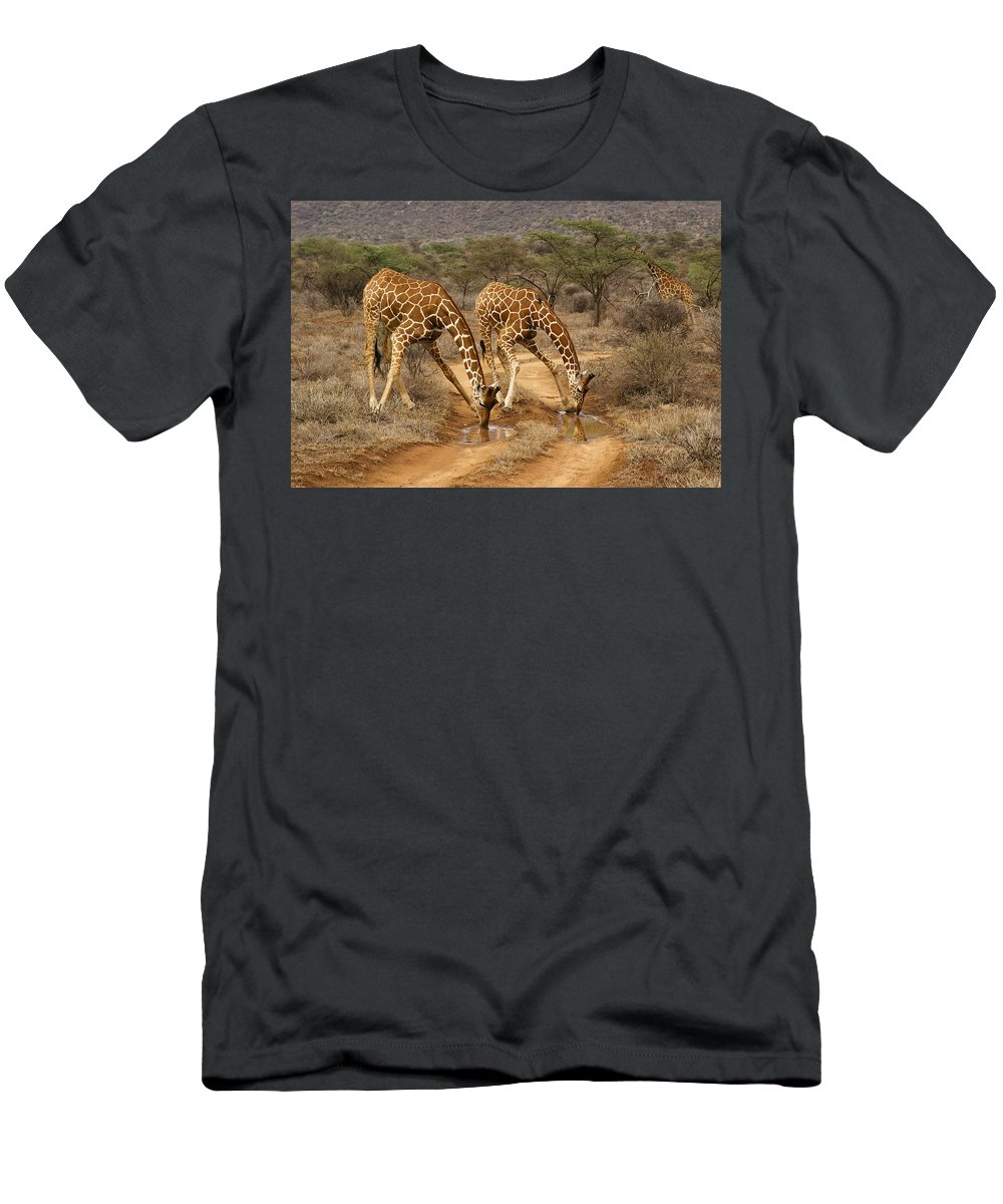 Africa T-Shirt featuring the photograph Drinking in Tandem by Michele Burgess