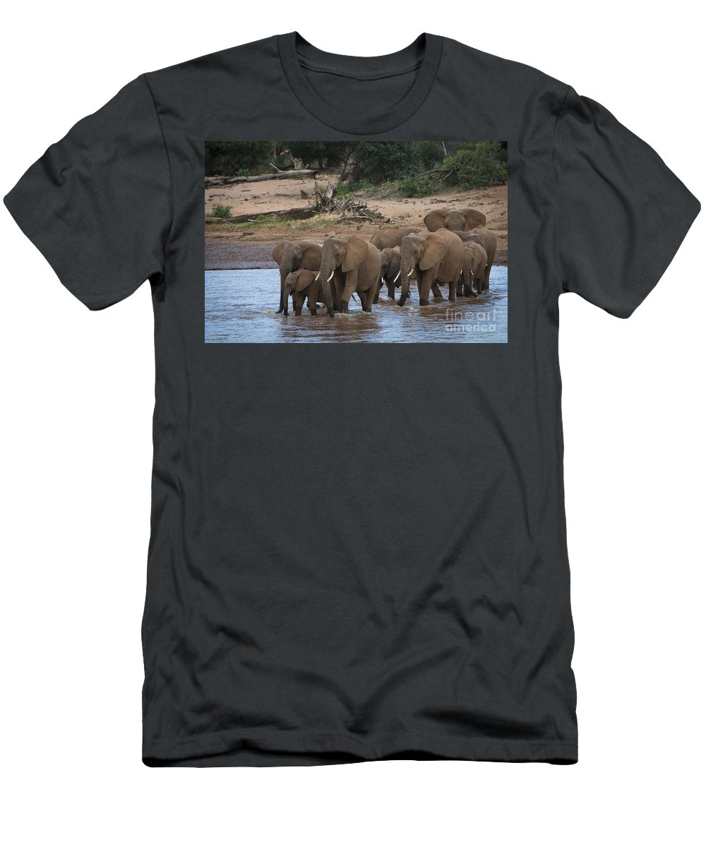 Africa Men's T-Shirt (Athletic Fit) featuring the photograph Elephants Crossing The River by John Shaw