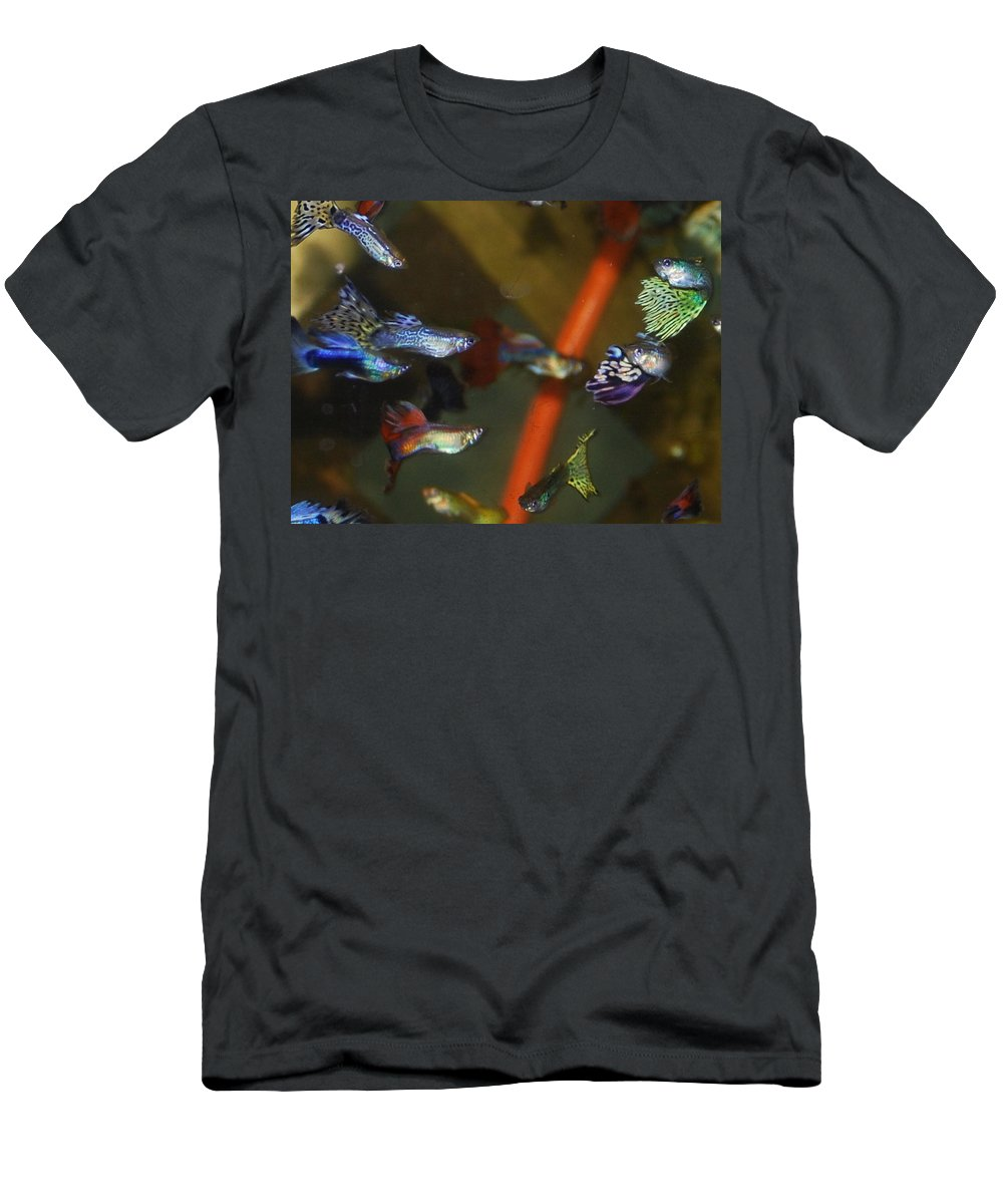 My Aquarium Men's T-Shirt (Athletic Fit) featuring the photograph Fancy Guppys by Robert Floyd