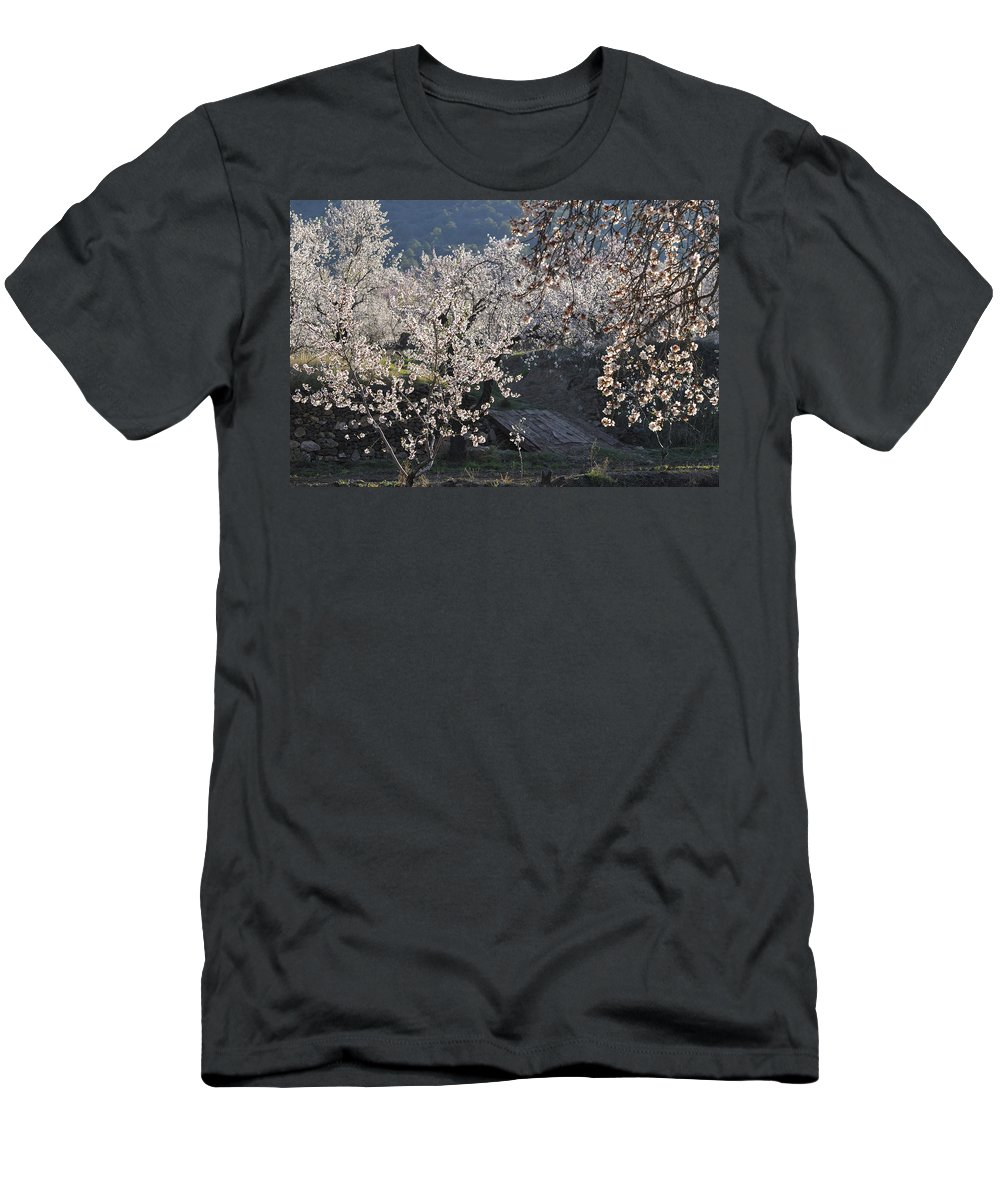 Almond Men's T-Shirt (Athletic Fit) featuring the photograph Flowering Almond by Guido Montanes Castillo