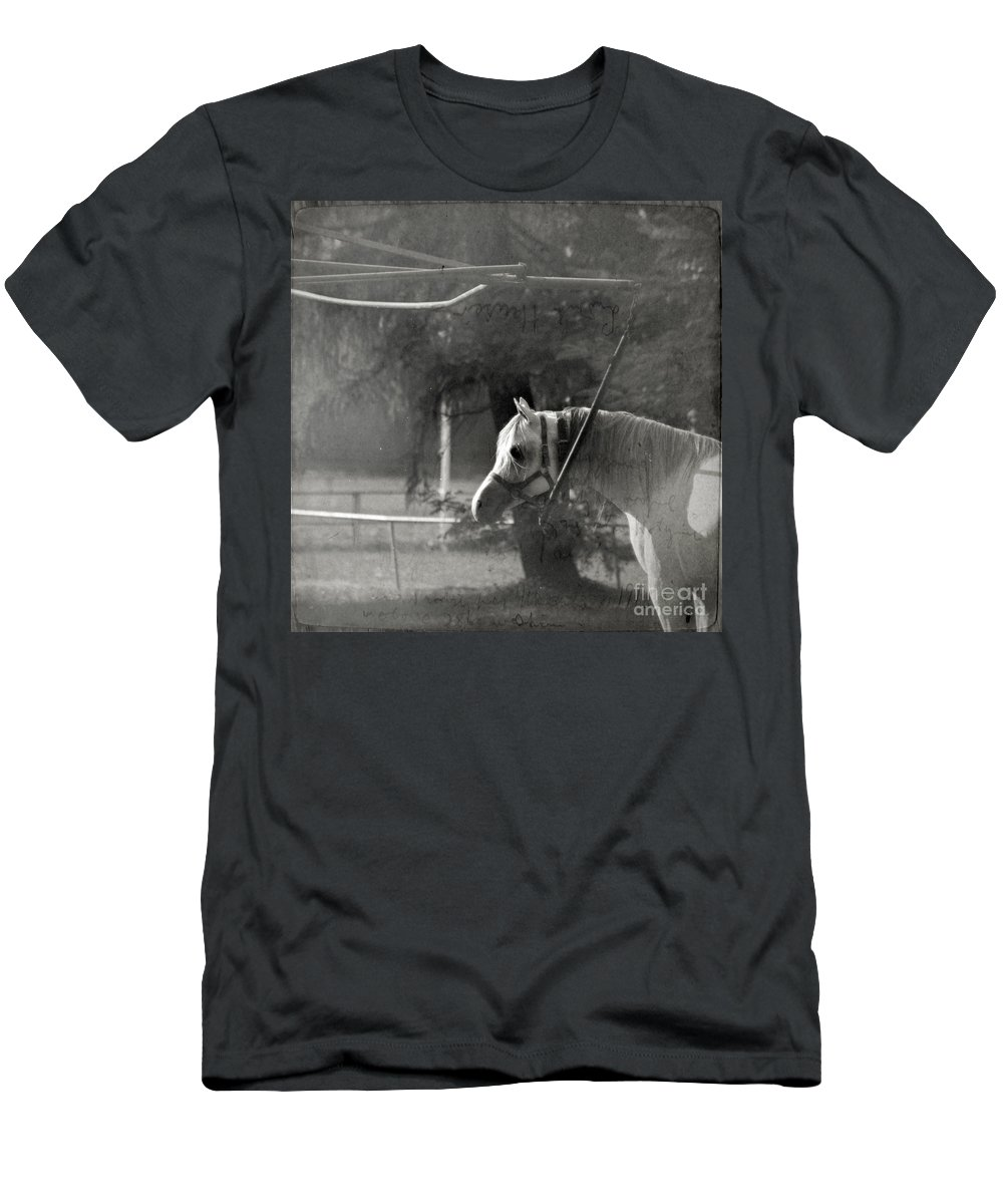 Horse Men's T-Shirt (Athletic Fit) featuring the photograph In The Captivity by Angel Ciesniarska