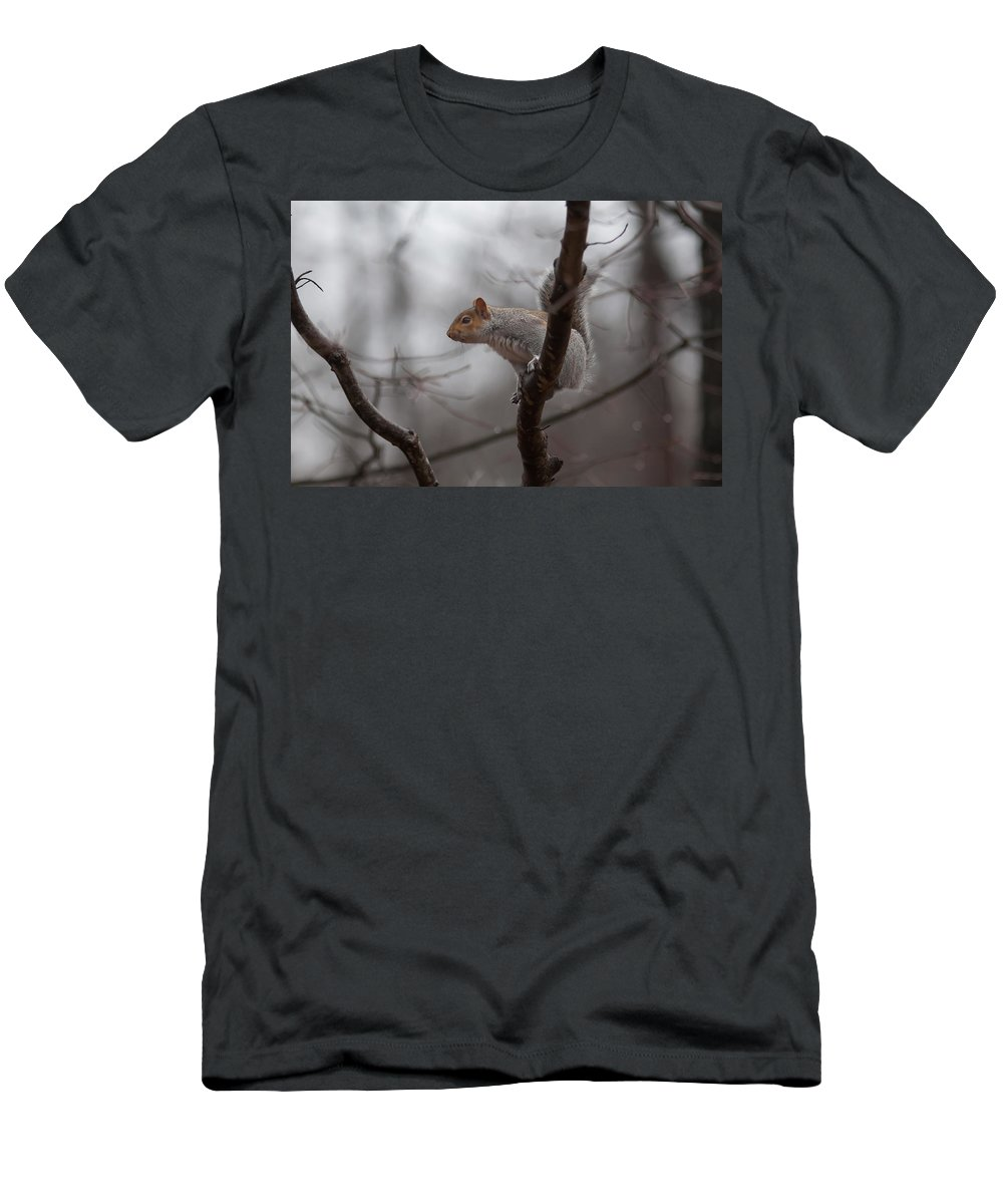 Animal Men's T-Shirt (Athletic Fit) featuring the photograph Jumping Squirrel by Alex Grichenko