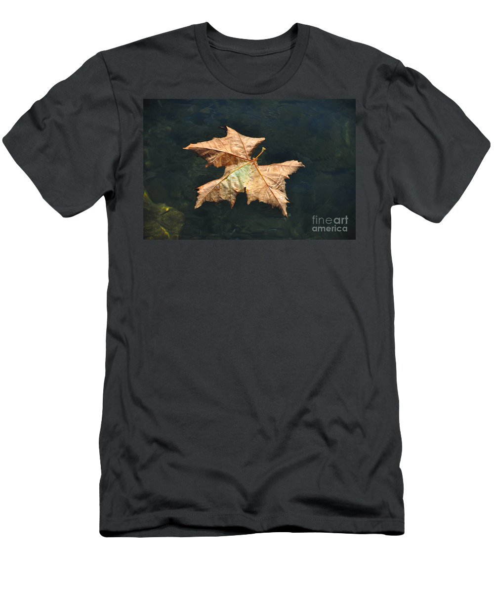 Maple Men's T-Shirt (Athletic Fit) featuring the photograph Maple Leaf by Mats Silvan
