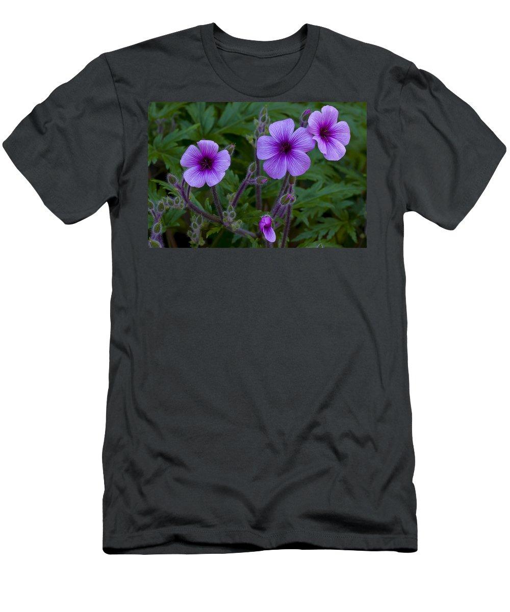 Purple Men's T-Shirt (Athletic Fit) featuring the photograph Purple by Dennis Reagan