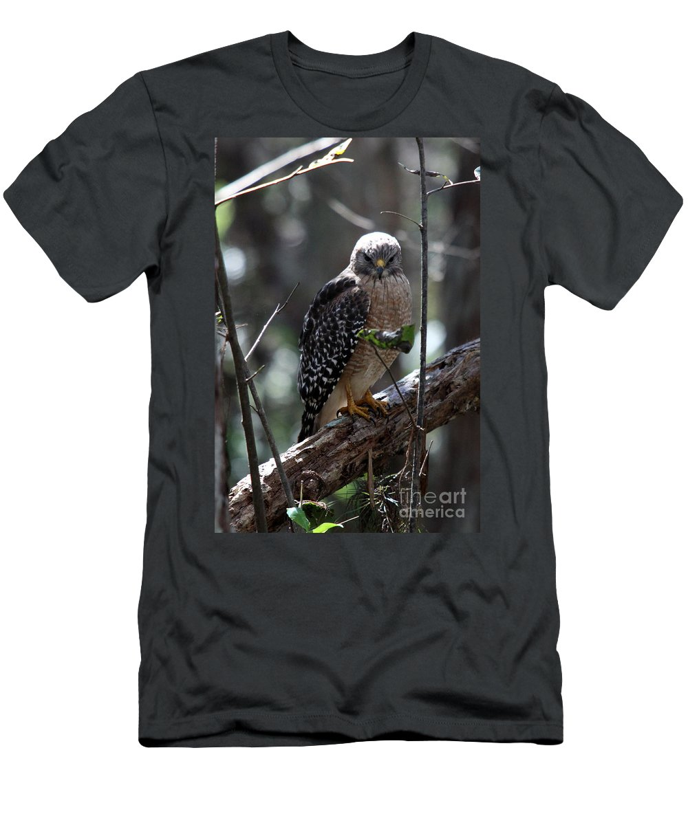 Hawk Men's T-Shirt (Athletic Fit) featuring the photograph Red - Shouldered Hawk II by Christiane Schulze Art And Photography
