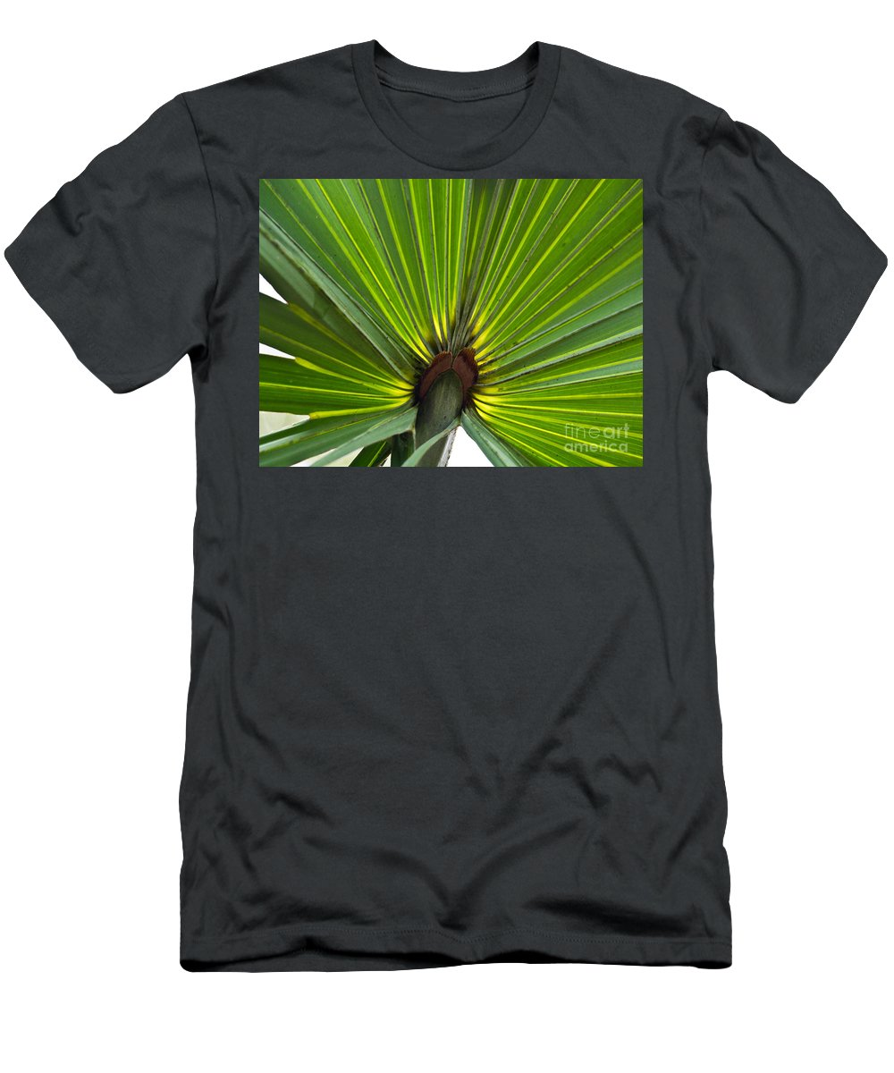 America Men's T-Shirt (Athletic Fit) featuring the photograph Saw Palmetto by Howard Stapleton
