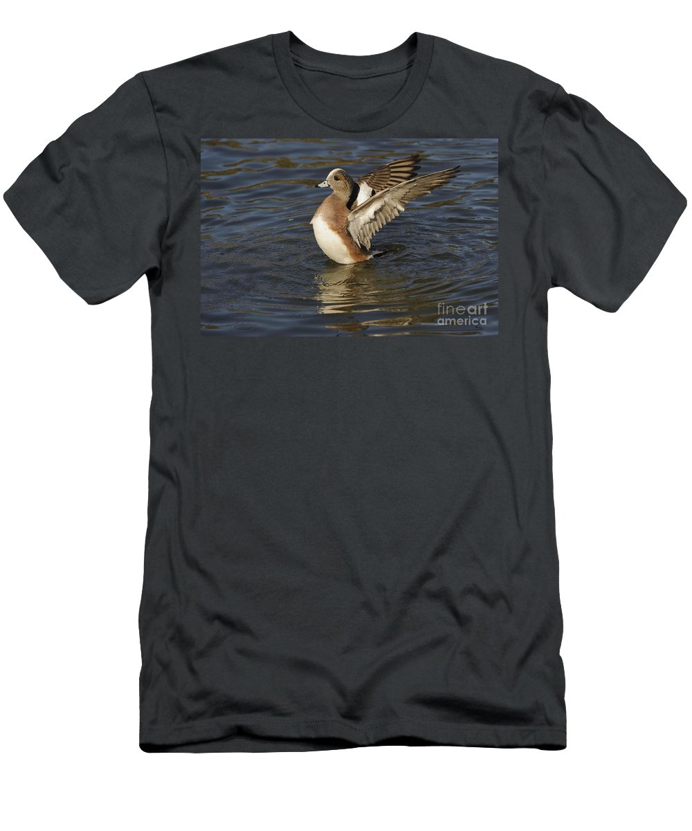New Mexico Fauna Men's T-Shirt (Athletic Fit) featuring the photograph American Widgeon by John Shaw