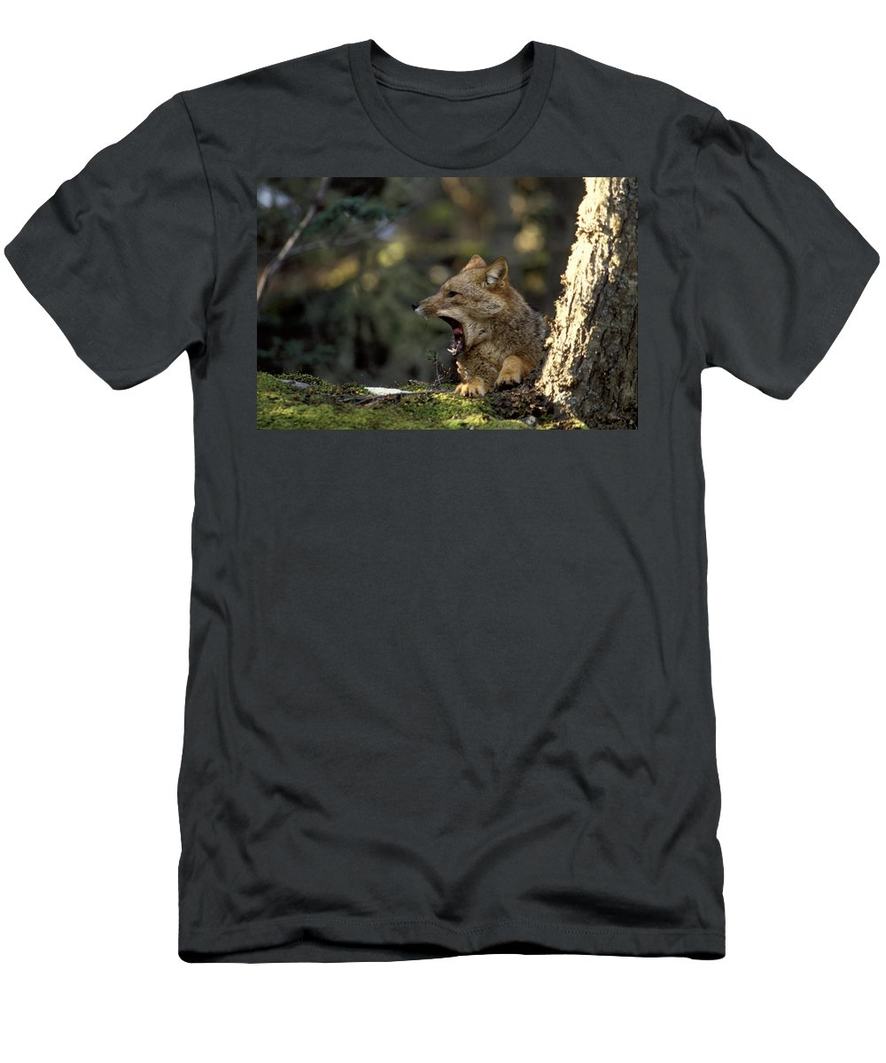 Aliens Men's T-Shirt (Athletic Fit) featuring the photograph Environmental Woes Of Tierra Del Fuego by Kevin Moloney