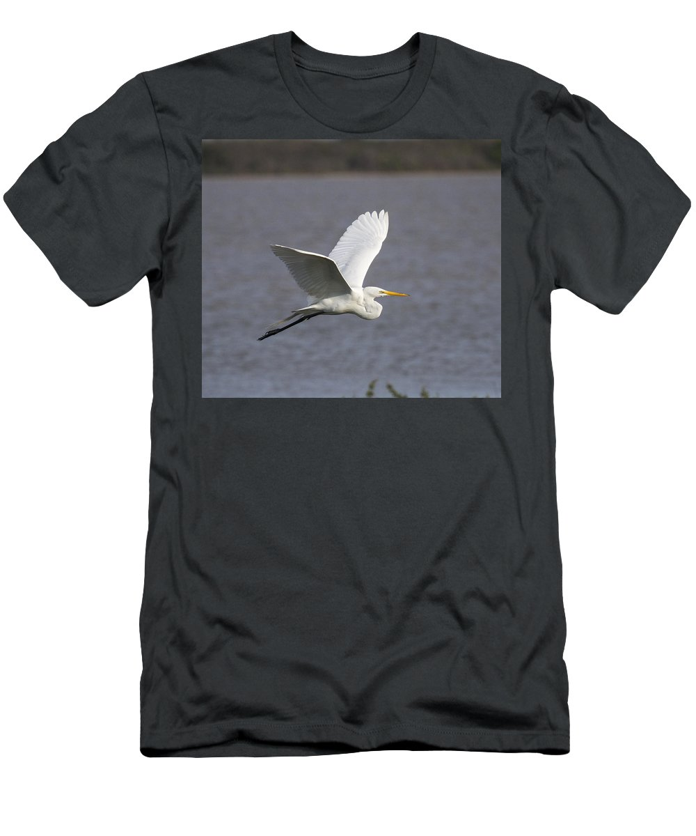 Doug Lloyd Men's T-Shirt (Athletic Fit) featuring the photograph Great Egret by Doug Lloyd