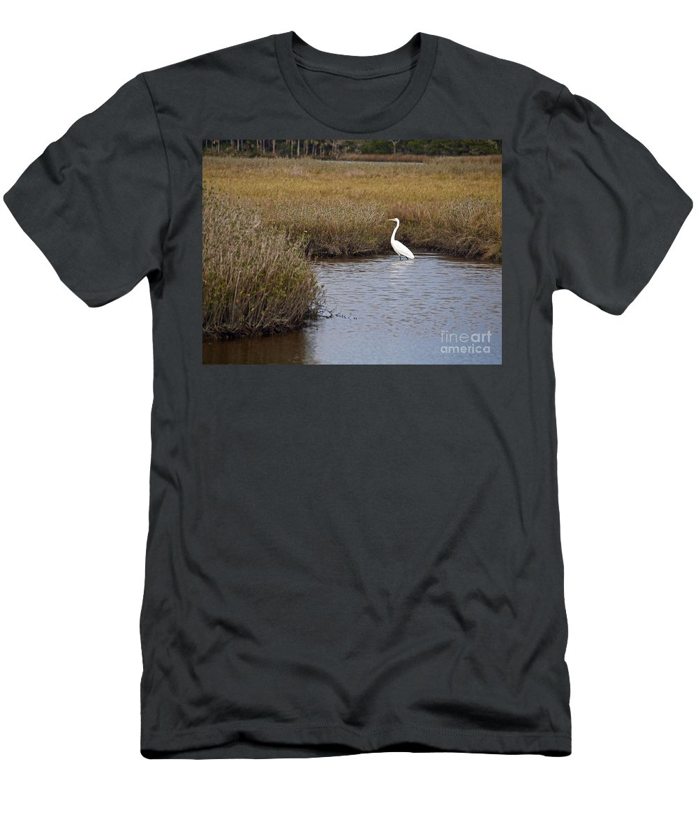 America Men's T-Shirt (Athletic Fit) featuring the photograph Great Egret by Howard Stapleton