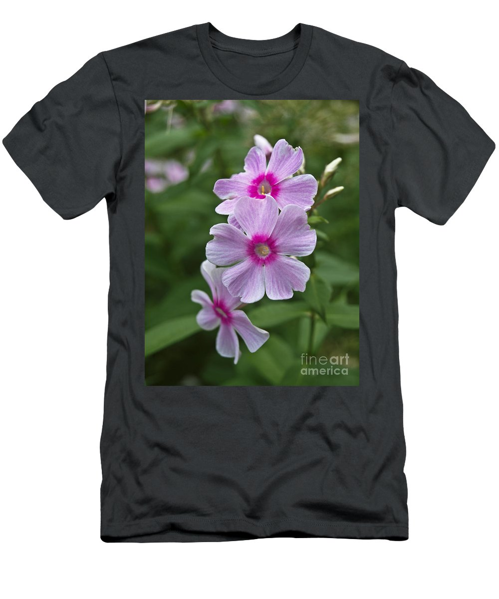 America Men's T-Shirt (Athletic Fit) featuring the photograph Pink Wood-sorrel by Howard Stapleton