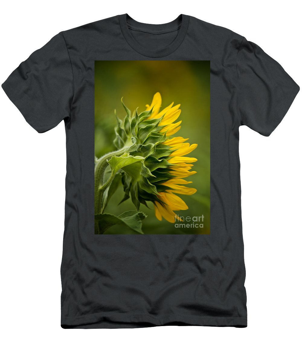 Michael Cummings Men's T-Shirt (Athletic Fit) featuring the photograph Sunflower by Michael Cummings
