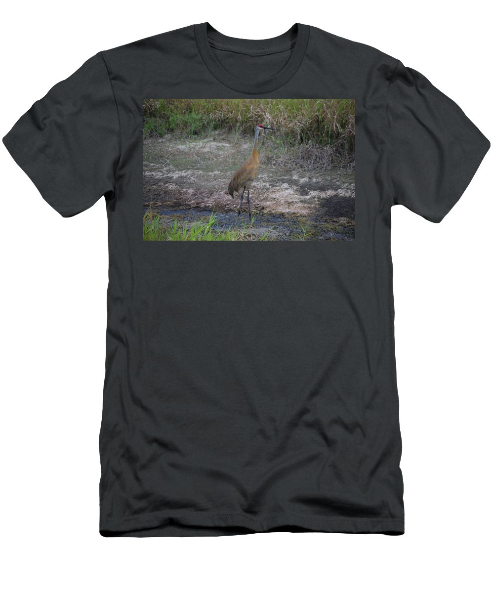 On Guard Men's T-Shirt (Athletic Fit) featuring the photograph Sandhill Crane by Robert Floyd