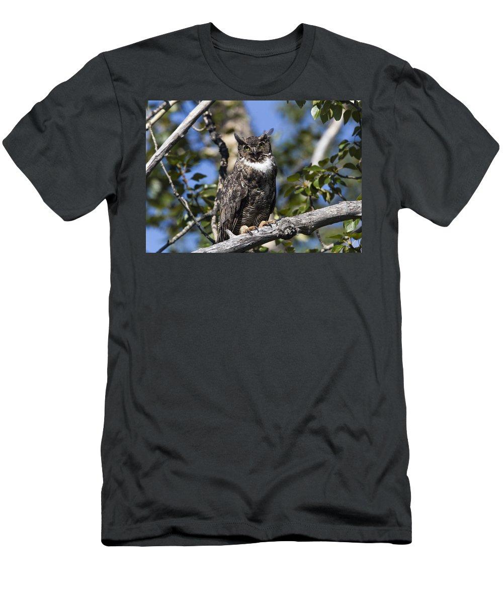 Doug Lloyd Men's T-Shirt (Athletic Fit) featuring the photograph Eye Contact by Doug Lloyd