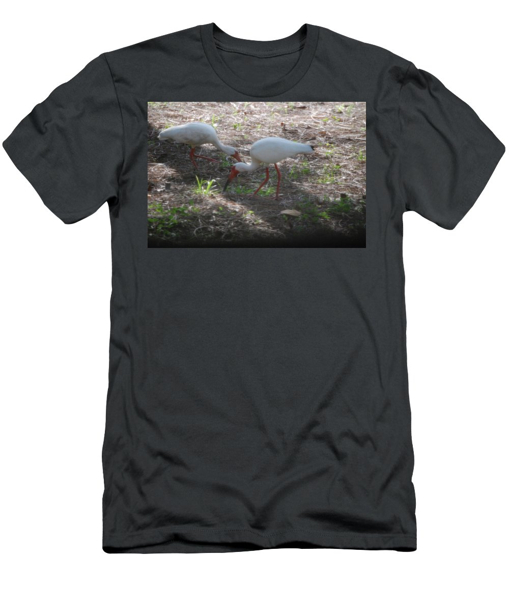 Suncoast Exterminator Men's T-Shirt (Athletic Fit) featuring the photograph White Ibis by Robert Floyd