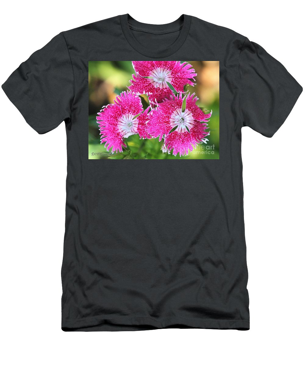 Mccombie Men's T-Shirt (Athletic Fit) featuring the painting Dianthus Cross by J McCombie