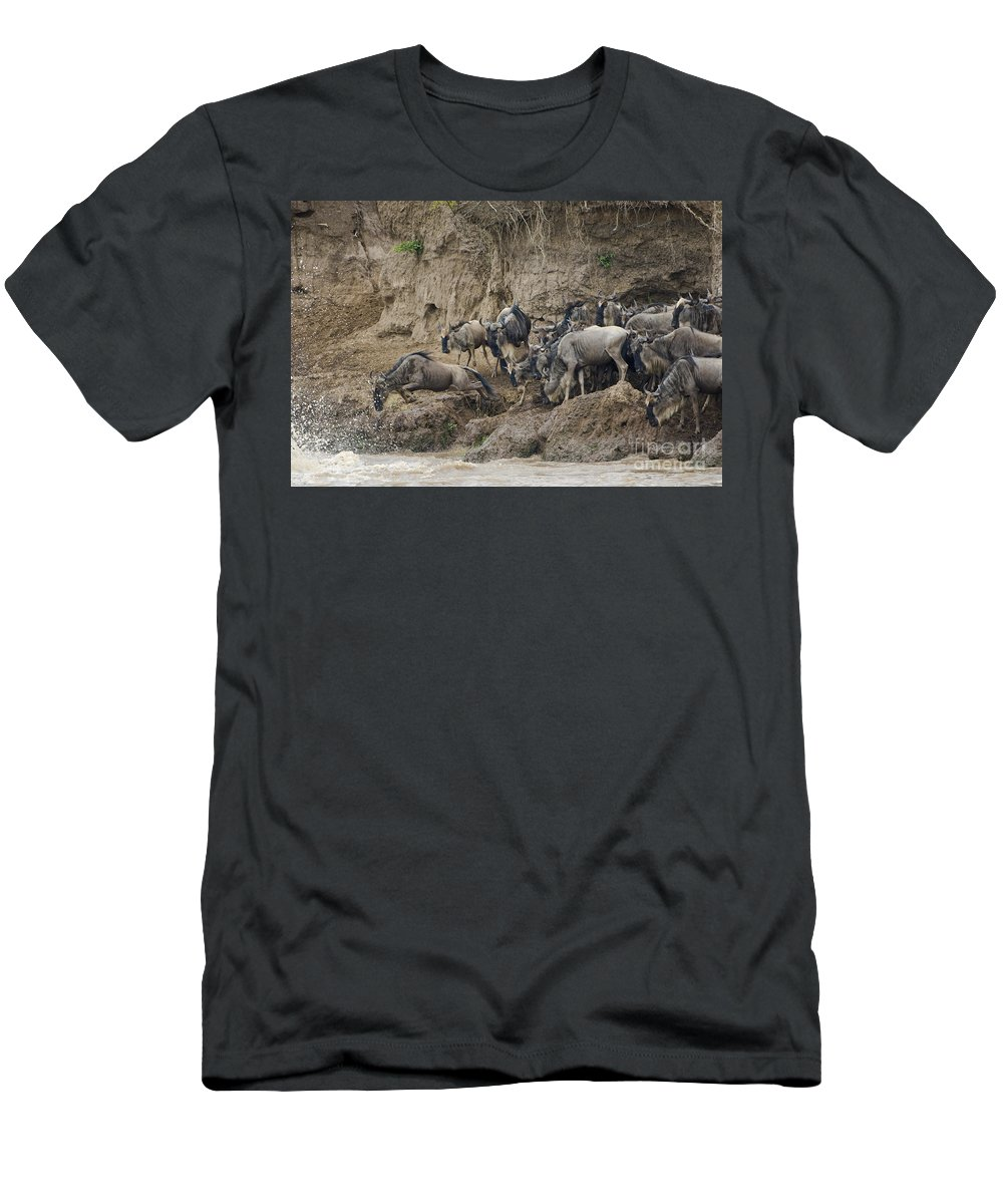 Africa Men's T-Shirt (Athletic Fit) featuring the photograph Wildebeests Crossing Mara River, Kenya by John Shaw