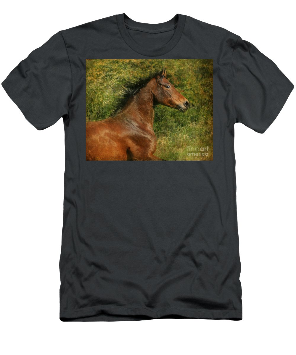 Horse Men's T-Shirt (Athletic Fit) featuring the photograph The Bay Horse by Angel Ciesniarska