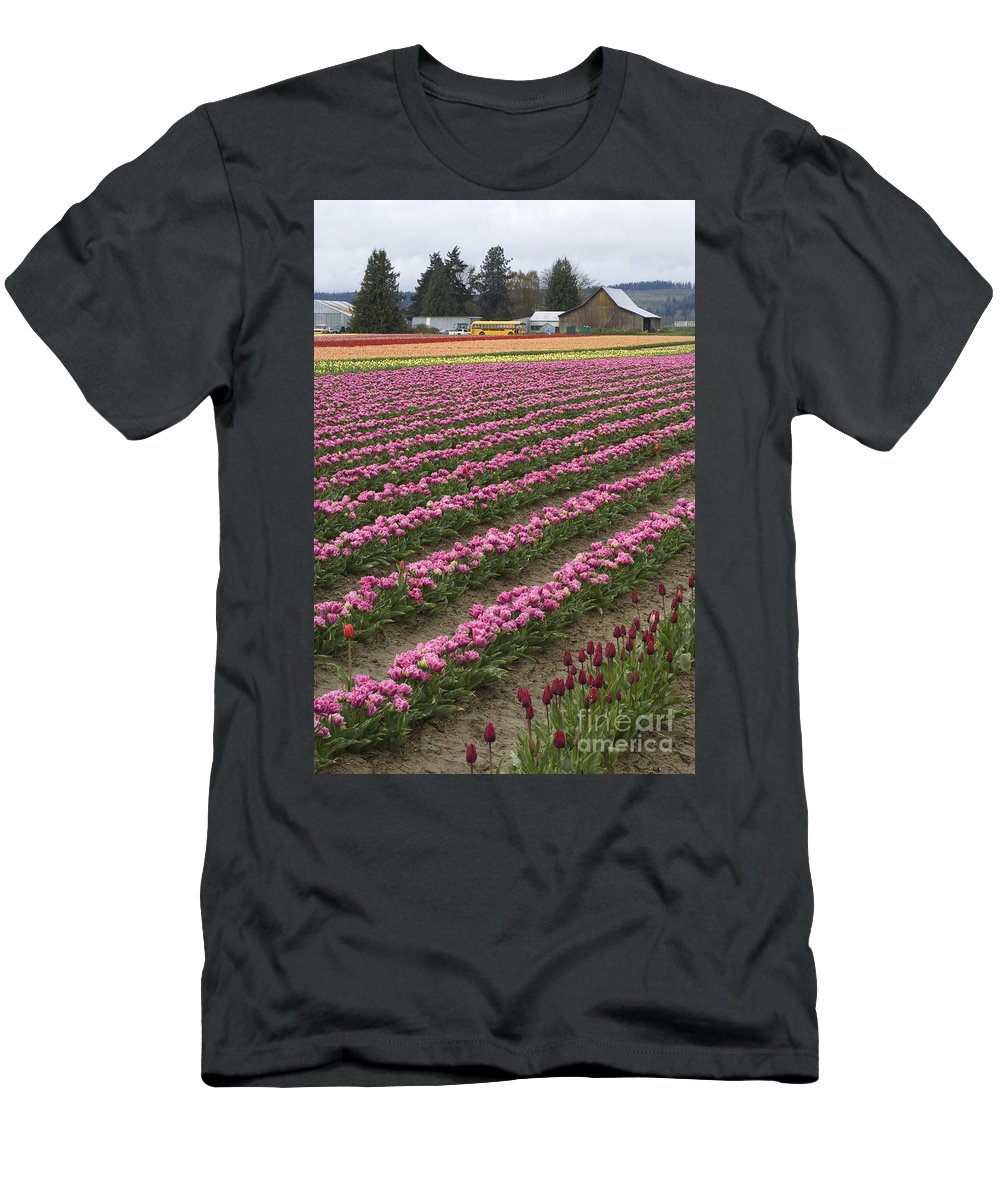 Tulip Field Men's T-Shirt (Athletic Fit) featuring the photograph Tulip Field by John Shaw