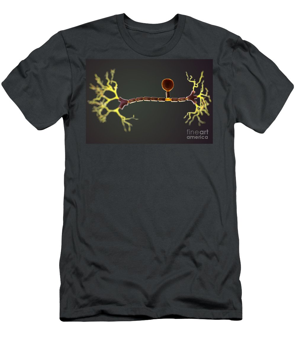 3d Model Men's T-Shirt (Athletic Fit) featuring the photograph Unipolar Neuron by Science Picture Co