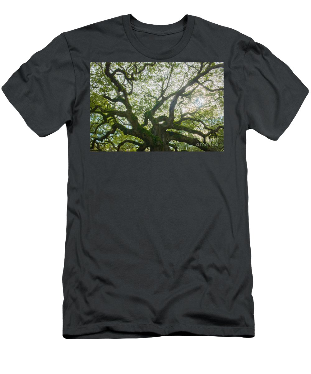 Angel Oak Tree On Johns Island Sc Men's T-Shirt (Athletic Fit) featuring the photograph Let There Be Light by Dale Powell