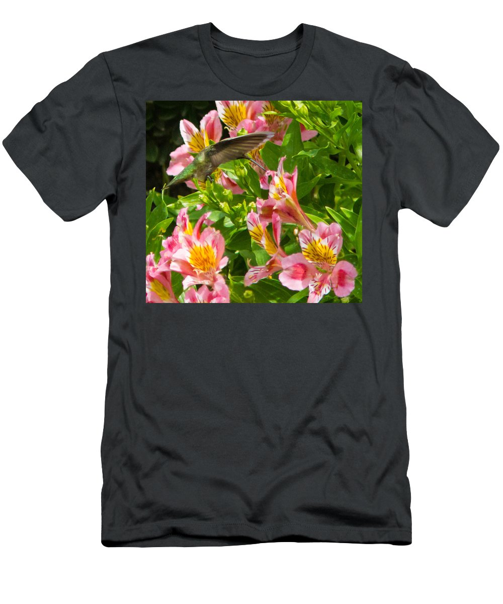 Humming Birds Flowers Nature Wildlife All Prints Are Available In Prints Men's T-Shirt (Athletic Fit) featuring the photograph A Annas Humming Bird by Brian Williamson