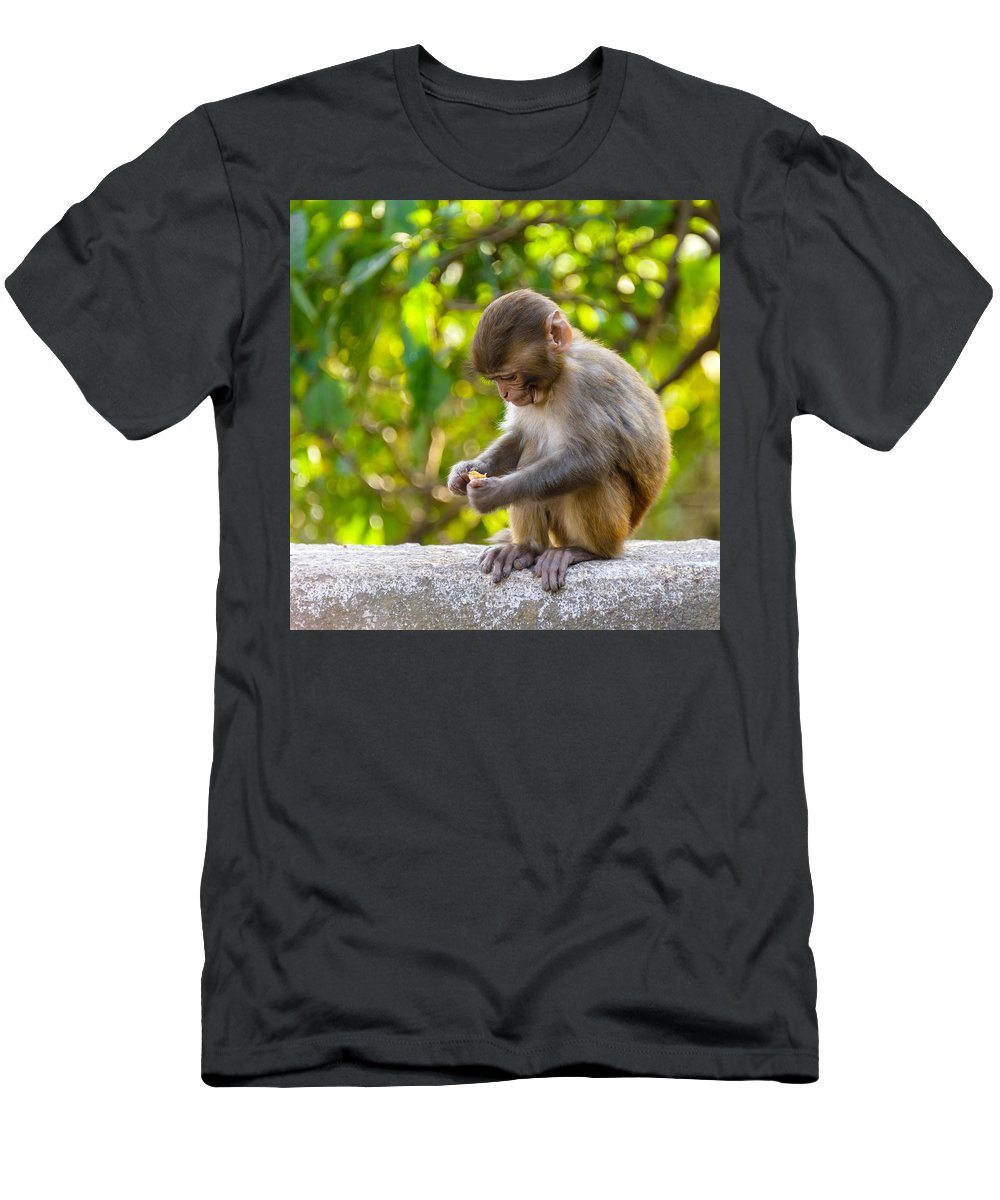 Macaque Men's T-Shirt (Athletic Fit) featuring the photograph A Baby Macaque Eating An Orange by Dutourdumonde Photography